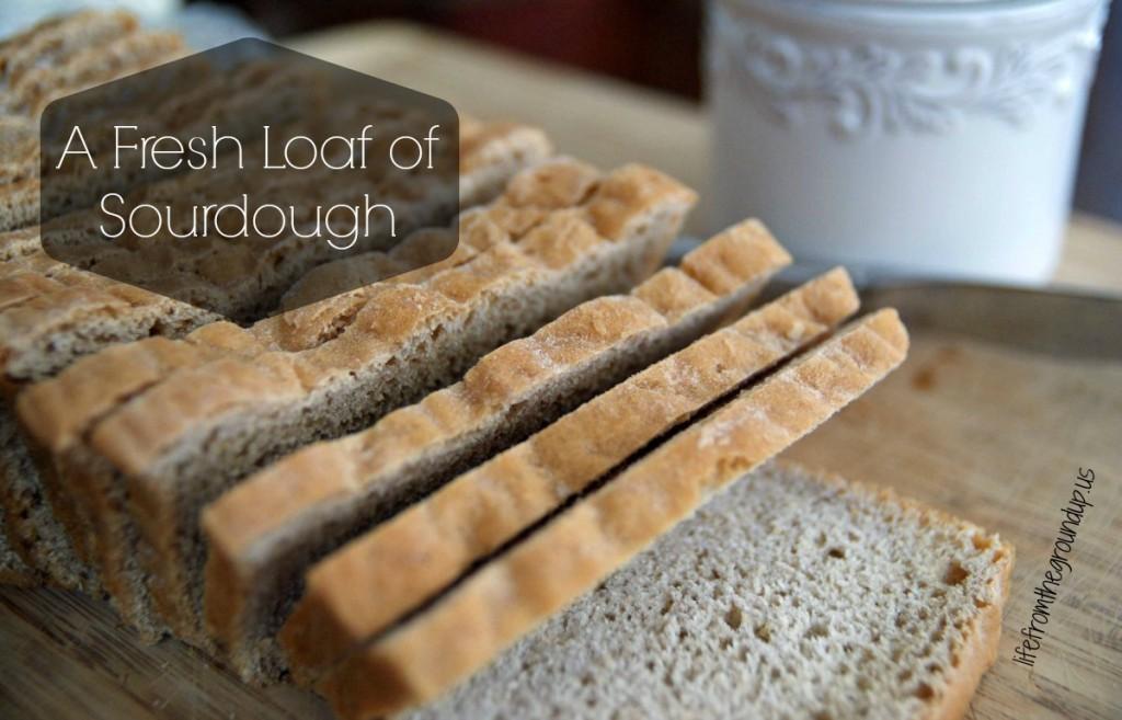 Homemade Sourdough Bread - lifefromthegroundup.us