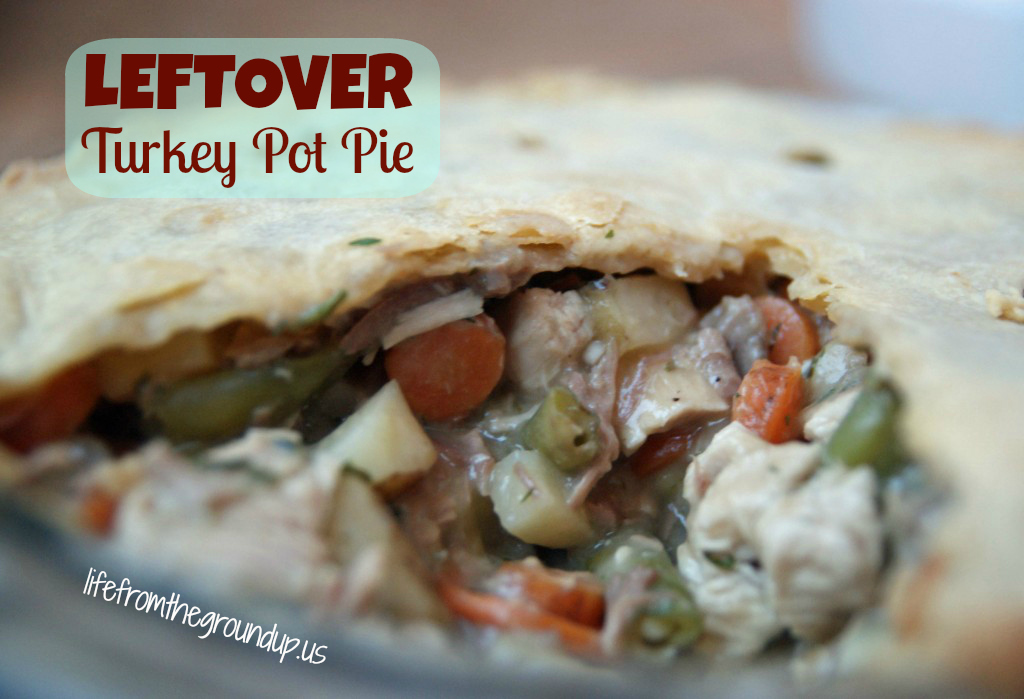Leftover Turkey Pot Pie - lifefromthegroundup.us