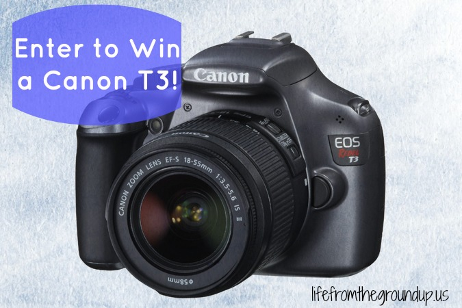 T3 giveaway