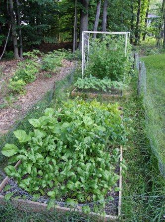 garden6212