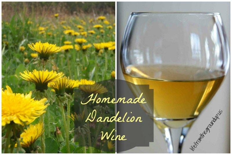 Dandelion Wine - lifefromthegroundup.us