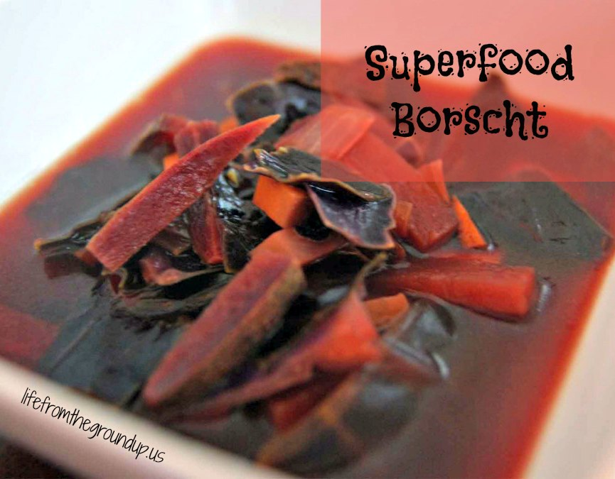 Superfood Borscht - lifefromthegroundup.us