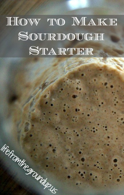 Make Your Own Sourdough Starter - lifefromthegroundup.us