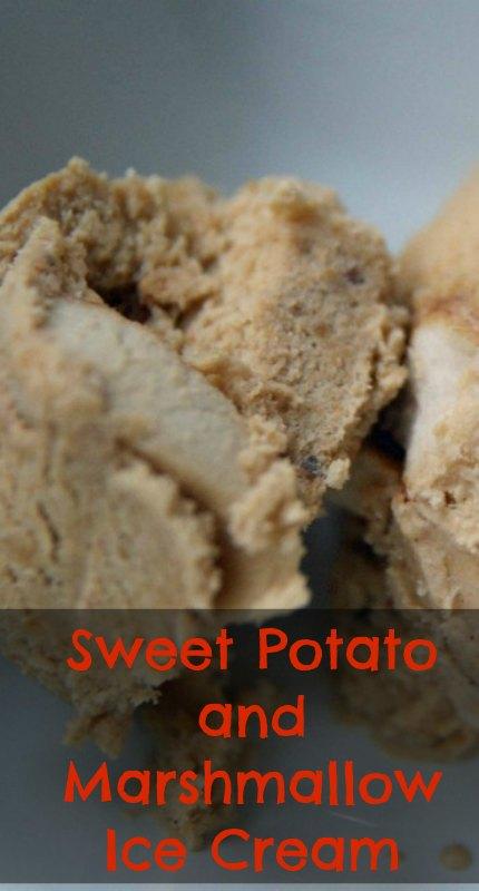 Toasted Marshmallow and Sweet Potato Ice Cream - lifefromthegroundup.us