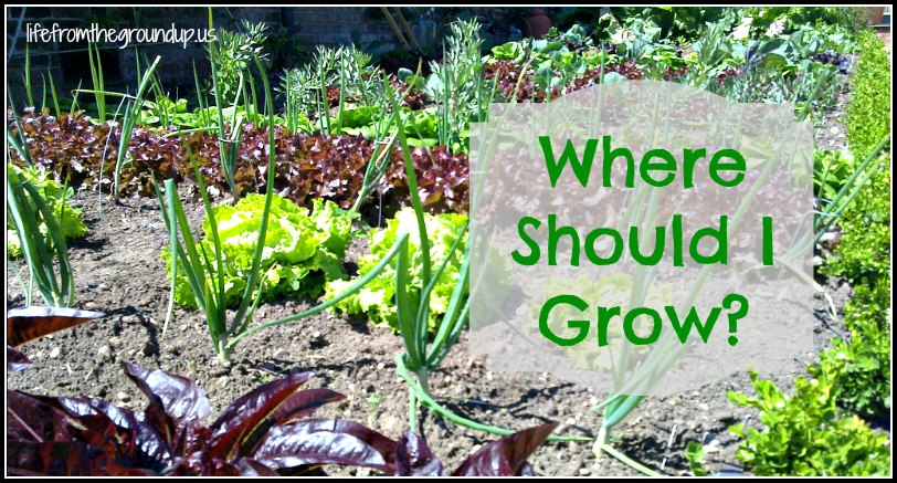 Where to Grow - lifefromthegroundup.us