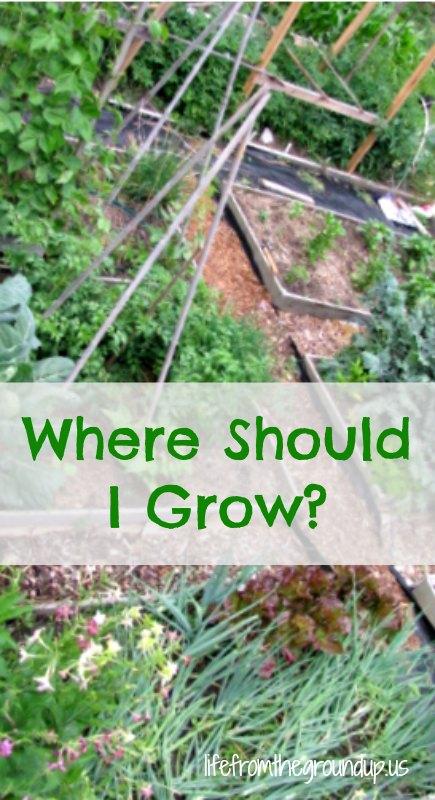 Where to Grow 2 - lifefromthegroundup.us