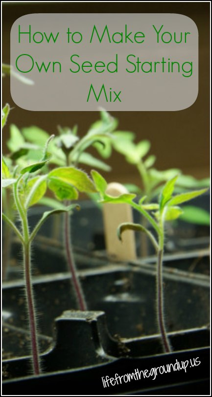 DIY Seed Starting Mix - lifefromthegroundup.us