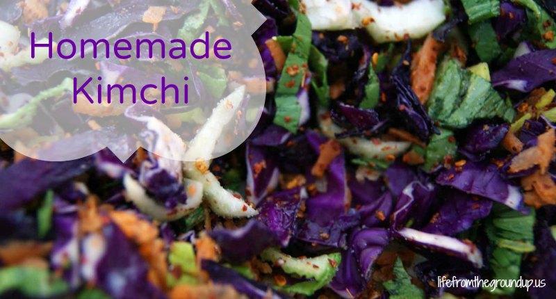 Homemade Kimchi - lifefromthegroundup.us