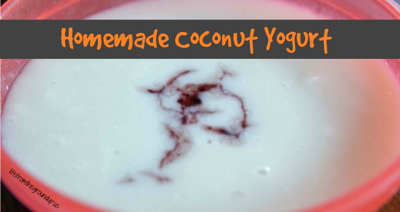 Homemade Coconut Yogurt - lifefromthegroundup.us