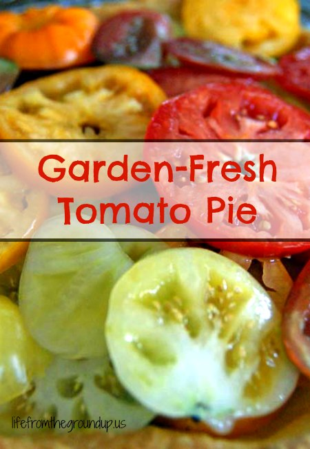 Tomato Pie - lifefromthegroundup.us