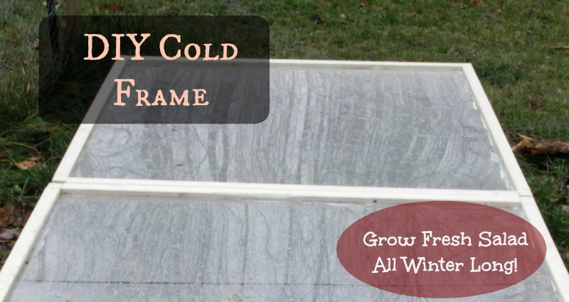 DIY Cold Frame - lifefromthegroundup.us