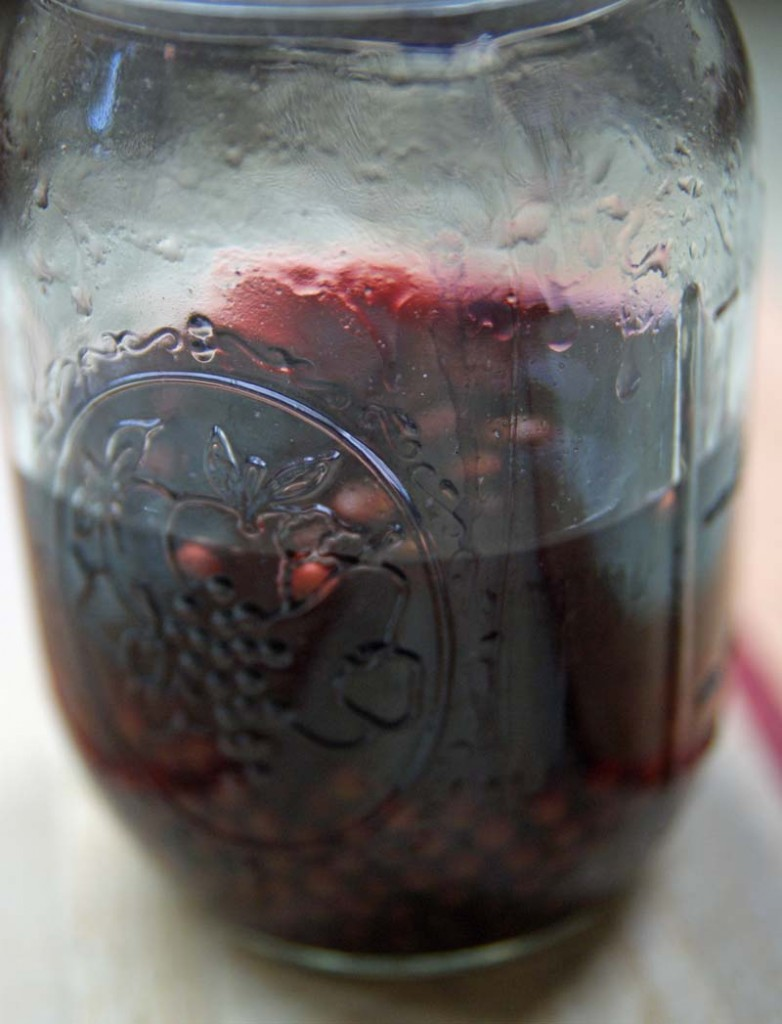 Elderberry Tincture Soak