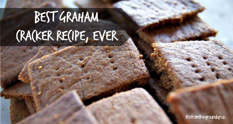 Homemade Graham Cracker Recipe - lifefromthegroundup.us