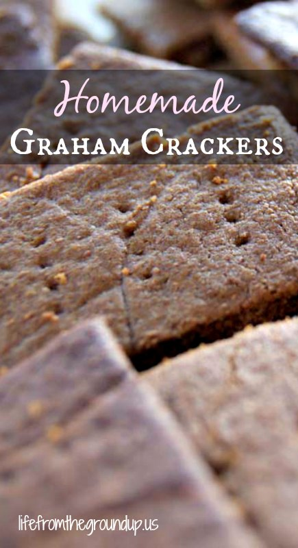 Homemade Graham Cracker Recipe 2 - lifefromthegroundup.us
