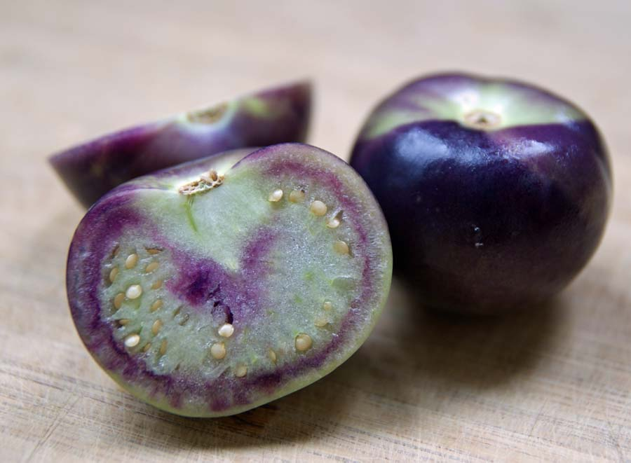 Purple Tomatillo - lifefromthegroundup.us