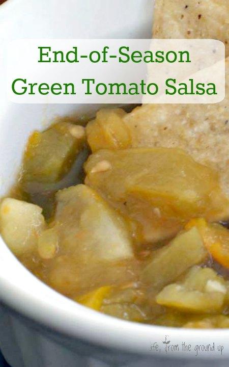Green Tomato Salsa - lifefromthegroundup.us