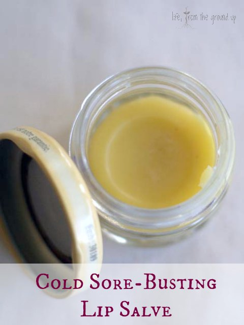 Homemade Cold Sore Treatment (with Lemon Balm) - lifefromthegroundup.us