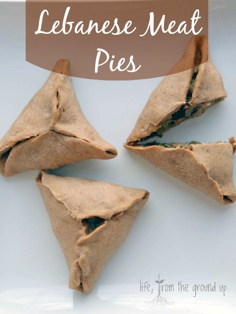 Lebanese-style Meat Pies - lifefromthegroundup.us