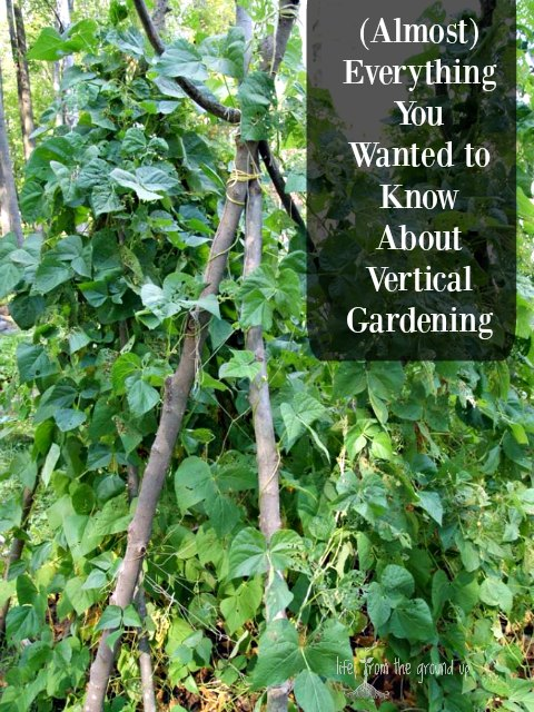 Vertical Gardening - lifefromthegroundup.us