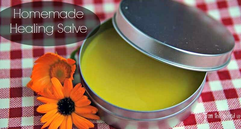 Herbal Healing Salve - lifefromthegroundup.us
