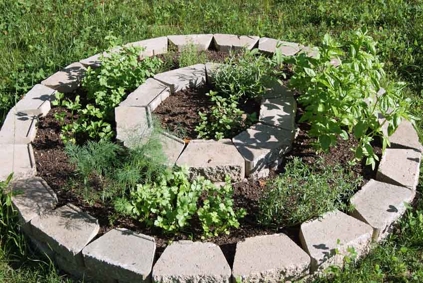 Raised beds can be made out of almost any material - here's one of my herb beds.