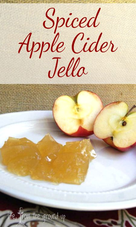 Spiced Apple Cider Jello